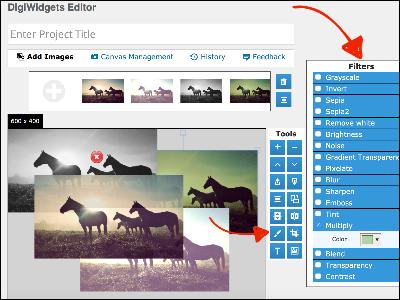 wordpress image editor